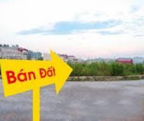 Cần tiền bán gấp lô đất Lê Đình Cẩn, giá 1.5 tỷ