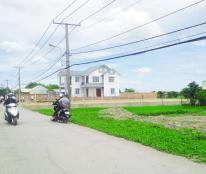 Đất xây xưởng Phong Phú Bình Chánh 1000m2. 0903078370