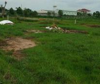Cần bán 19.000 m2 đất tại An Nghĩa - Cần Giờ