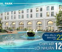 ROYAL PARK BẮC NINH hướng đến chuyên gia nước ngoài làm việc tại Bắc Ninh