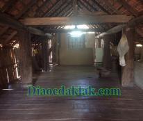 Đất vườn DT: 4,350m2 Nguyễn Thị Định có ao cá, cây ăn trái, nhà sàn gỗ hương,…!!!