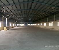 Kho xưởng cho thuê tại Bình Giang Hải Dương 1500m2 đến 1,5ha, có nhà VP, để xe, bảo vệ