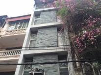 Bán nhà phố Hoàng Cầu, DT 32m, ô tô đỗ, kinh doanh khủng, giá 3.85 tỷ.