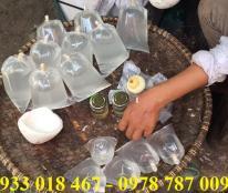 Bán nước dừa tươi nguyên chất tại bình dương