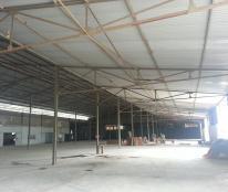 Cho thuê kho xưởng tại Thanh Hóa, Nga Sơn, 9000m2, ảnh thật