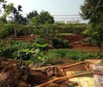 Bán trang trại, khu nghỉ dưỡng tại Buôn Ma Thuột, Đắk Lắk diện tích 2100m2 giá 1.7 Tỷ