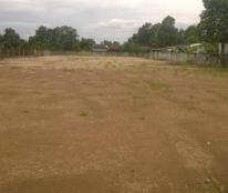 Bán gấp 2538m2 đất thổ cư 100% đã san lấp hết đất ở mặt tiền tỉnh lộ 835 Cần Giuộc Long An