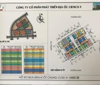 Chính chủ bán kiot chung cư Thanh Hà Cienco 5.