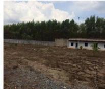 Chính chủ bán gấp 13000m2 đất Long Thành có phòng ăn, nhà khách, xưởng kho lớn, tường rào 2m