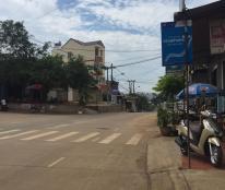 Bán nhà riêng tại đường Phạm Ngũ Lão, Buôn Ma Thuột, Đắk Lắk diện tích 100m2, giá 450 triệu