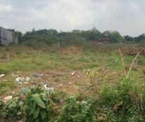 Bán đất đường 6A xã Vĩnh Lộc B, Huyện Bình Chánh. Cách UBND xã VL B 100m