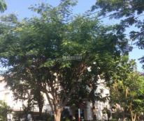 Cho thuê biệt thự Mỹ Thái 1, căn góc 2 mặt tiền 240m2, nhà đẹp, giá 40 triệu/tháng