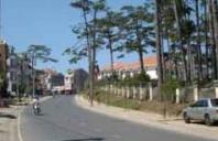 N3110 Bán gấp nhà đẹp đường xe hơi phường 4 Đà Lạt – Bất Động Sản Liên Minh