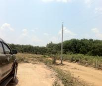 Đất vườn- Ao- Chuồng (vac), cơ sở hạ tầng hoàn thiện