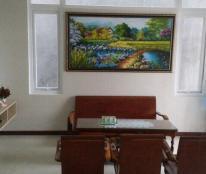 Nhà đẹp mới xây hẻm lớn Nguyễn Tri Phương