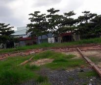 Bán đất đường 49 phường Hiệp Bình Chánh, đã có sổ hồng riêng, xây dựng tự do