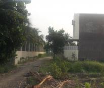 Cần bán đất khu dân cư Phú Dân, TP Bến Tre