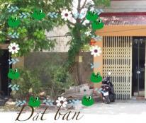 Cần bán đất Thị trấn Ân Thi , Hưng Yên