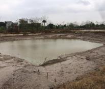 Bán trang trại tại tp Hưng Yên diện tích là 3 mẫu