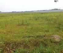 Bán đất công nghiệp tại Vĩnh Phúc, KCN Bình Xuyên (chuyển nhượng) DT 5000m2 tới 20000m2