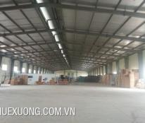 Cho thuê xưởng/đất giá rẻ tại Tân Yên, Bắc Giang, DT 2810m2