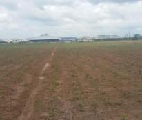 Cho thuê đất công nghiệp tại Cao Thượng Tân Yên Bắc Giang 10000m có cắt nhỏ giá sốc