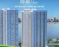 Hãy đọc thông tin sau trước khi mua căn hộ Ecolake View