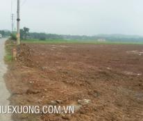 Cho thuê đất trống tại Hà Nội làm nhà xưởng hoặc kho