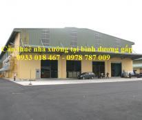 Cần thuê nhà xưởng gấp tại huyện Thuận An, Bình Dương 0933 018 467