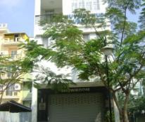Cho thuê nhà phố khu Hưng Gia Hưng Phước Phú Mỹ Hưng