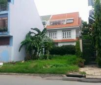 Cần Cho Thuê Đất Mặt tiền đường Nguyễn Bá Huân , Phường Thảo Điền Quận 2 .