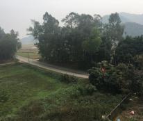 Bán trên 2000m2 đất trang trại tại Sóc Sơn, Hà Nội