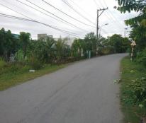 138m2 đất cần bán gấp, giá 400tr, nhánh Tân Liễu, xã Hưng Long, Bình Chánh.