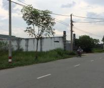 2900m2 đất mặt tiền cần bán gấp, giá 1,3tr/m2, đường T5, xã Tân Qúy Tây, huyện Bình Chánh.