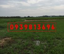 XUẤT NGOẠI BÁN ĐẤT - Vườn Ở X. Tân Thạnh Đông, Dt: 1389m2, Giá:1.1 Tỷ, Gọi Chủ 0939813696