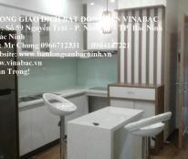 Cho thuê căn hộ Mường Thanh tại trung tâm TP.Bắc Ninh