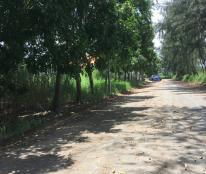 Cần bán đất xây biệt thự DT 15x18m 13C Green Life, Bình Chánh