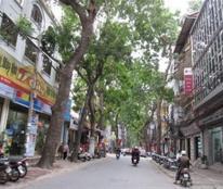 Bán nhà phân lô vip Lý Nam Đế, quận Hoàn Kiếm, 5 tầng, ô tô đỗ cửa, kinh doanh, an sinh vip.
