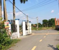 Bán lô đất chính chủ ngay mặt tiền đường số 8 cách chợ Long Phước 500m giá 760tr dt 57m2 0986879867
