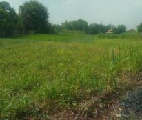 Vỡ nợ cần bán gấp 1490m2 có 120m2 thổ cư đất 2 mặt tiền xã Tân Quý Tây, Bình Chánh
