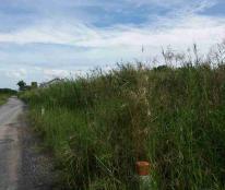 Kẹt nợ bán gấp 360m2 (15x24m) đất vườn mặt tiền đường Long Thới, Nhơn Đức, giá chỉ 1.42 tỷ