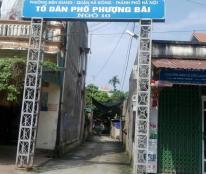 Vợ chồng bán gấp mảnh đất thổ cư Phượng Bãi, Biên Giang, Hà Đông. 41,2m2, sổ đỏ giá chỉ 12.5tr/m2