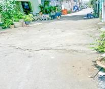Nhà hẻm xe hơi 6m Huỳnh Tấn Phát, Quận 7