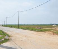 Chính chủ bán đất CN 50 năm tại Việt Trì, Phú Thọ DT 4805m2