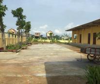Cho thuê xưởng 2.510m2 tại Thanh Hóa, Thọ Xuân, làm xưởng sản xuất
