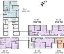 Bán căn 02 tòa C1, 2 phòng ngủ, Vinhomes D'Capitale, view nội khu tuyệt đẹp