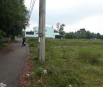 Bán đất tại Đường Đinh Bộ Lĩnh, Xã Lộc An, Long Thành, Đồng Nai diện tích 4632m2 giá 8.4 Tỷ