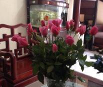 Bán nhà SĐCC trong ngõ 24 Nguyễn Công Hoan, Ba Đình, Hà Nội