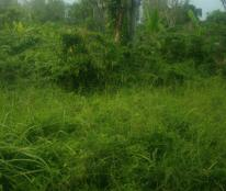 Đất kho xưởng mặt tiền đường Hóc Hưu xã Quy Đức huyện Bình Chánh