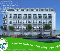 Dự án Biệt thự và Liền kề cao cấp DragonPark Văn Giang – Hưng Yên, cách Ecopark 50m